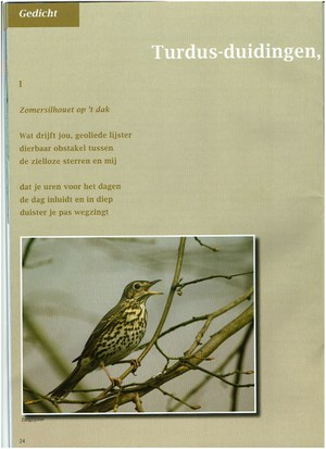 Turdus-duidingen (Part One)